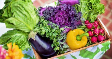 Kebutuhan Ibu Vegetarian saat Hamil